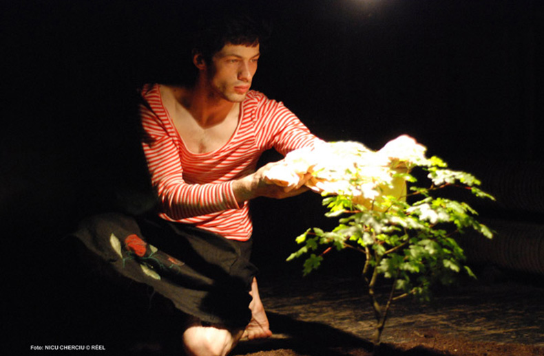 o vara fierbinte pe iza, 2007 - mihai maniutiu